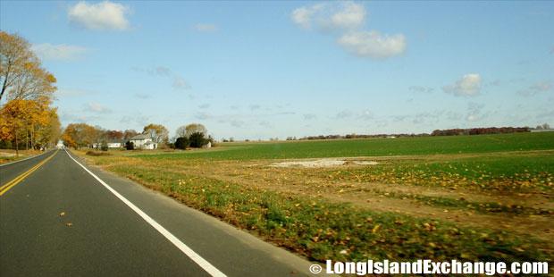 Aquebogue Farmland