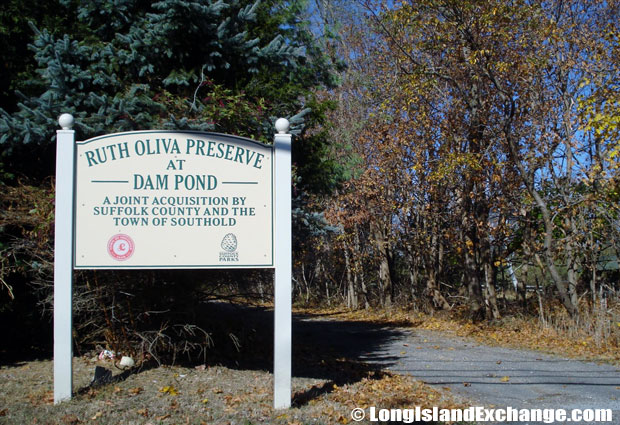 East Marion Oliva Preserve
