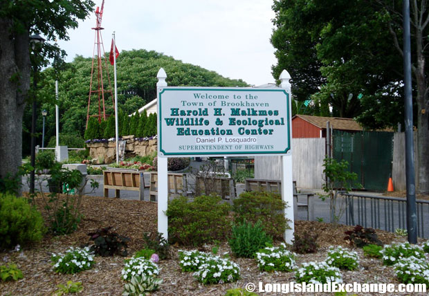Holtsville Harold H. Malkmes Wildlife Education and Ecology Center