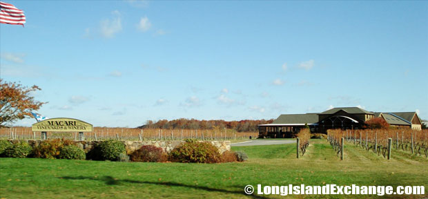 Mattituck Macari Vineyards