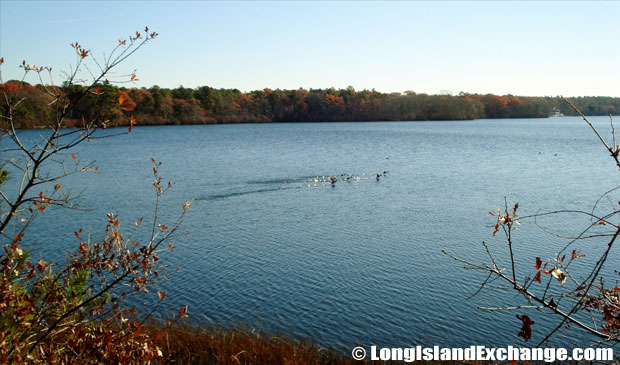 Northampton Wildwood Lake
