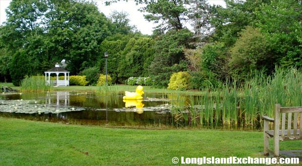 Quogue Duck Pond