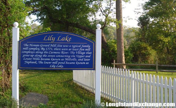 Lily Lake Sign