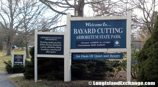 the Bayard Cutting Arboretum.