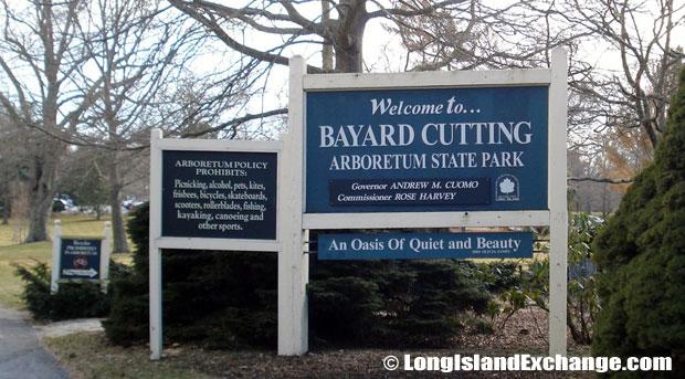 Bayard Cutting Arboretum.