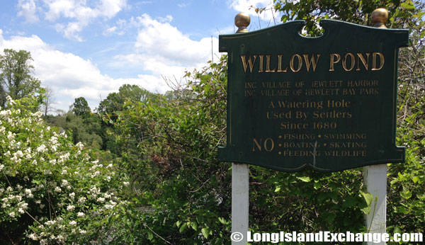 Captain John Hewlett Willow Pond
