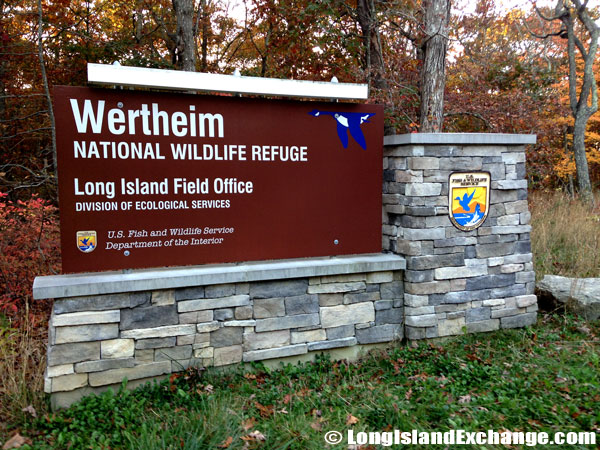 Wertheim National Wildlife Refuge