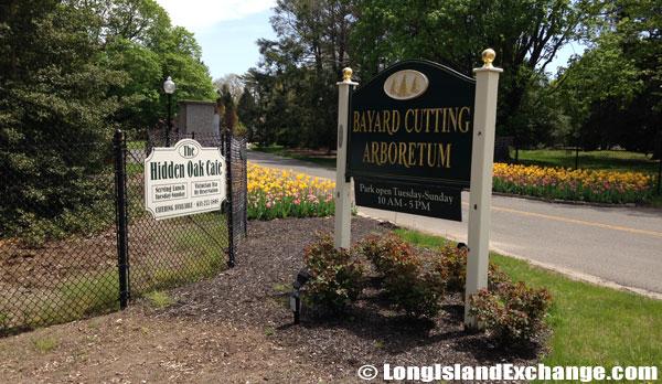 Bayard_Cutting_Arboretum1