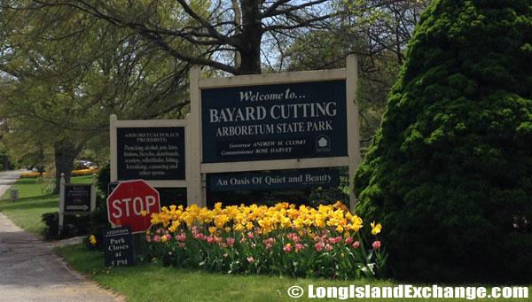 Bayard_Cutting_Arboretum2