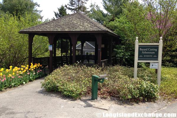 Bayard_Cutting_Arboretum9