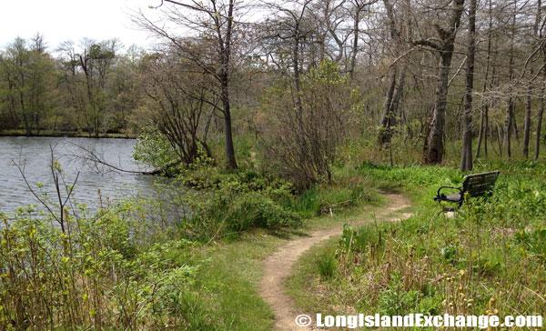 Bayard_Cutting_Arboretum911