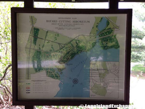 Bayard_Cutting_Arboretum944