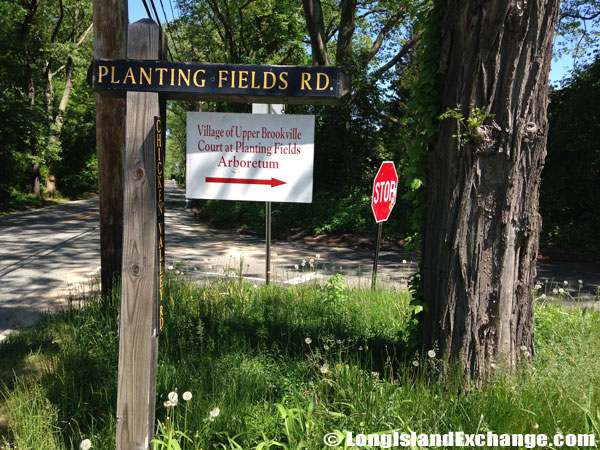 Arboretum on Planting Fields Road