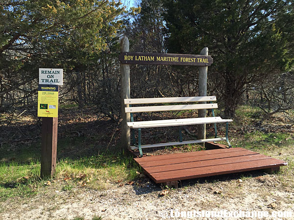 Roy Latham Maritime Forest Trail
