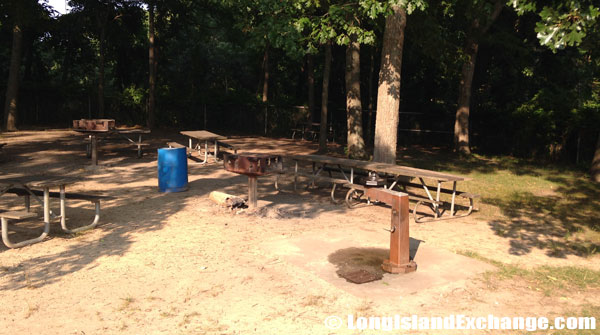 Picnic Barbeque Area