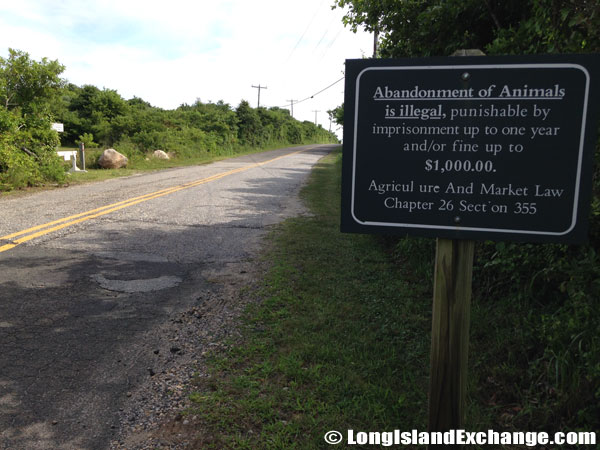 Animal Abandonment Sign