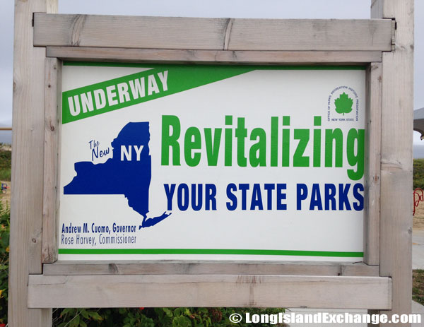 Revitalize New York