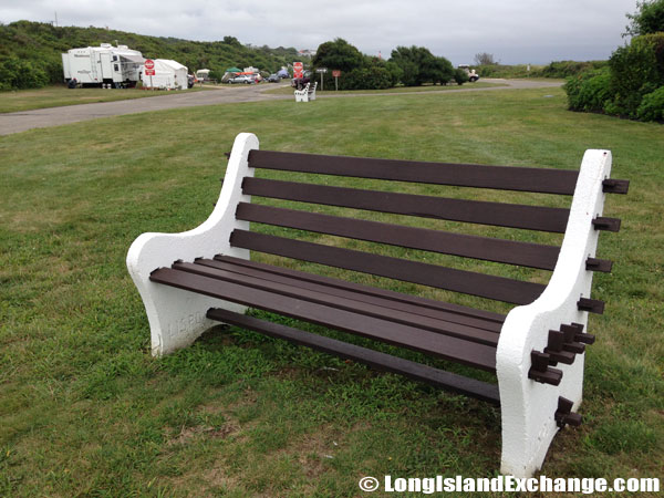 Bench on Lawn